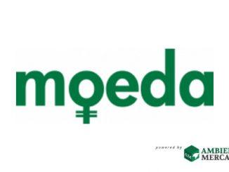 Moeda Semente lança carteira digital exclusiva para ativos verdes